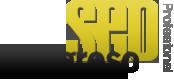 Congreso SEO logo